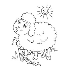 Coloring Pages Of Animals Sheep The Cute Kitten