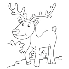 Reindeer Coloring Page Simple Sheet