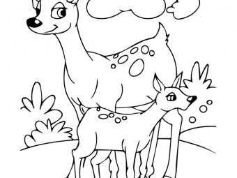 Top 25 Coloring Pages Of Animals Your Toddler Will Love
