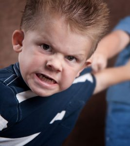 Aggression in Toddlers causes, management and prevention