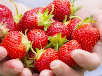 Is It Safe To Eat Strawberry During Pregnancy?