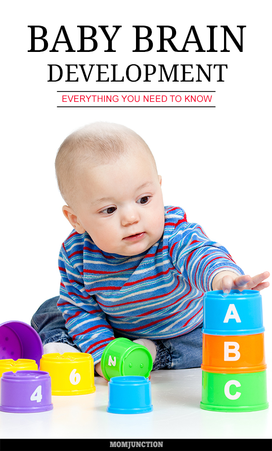 Baby Brain Development - Everything You Need To Know