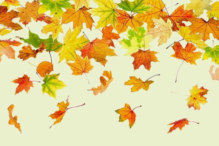 Easy Autumn Leaves Painting