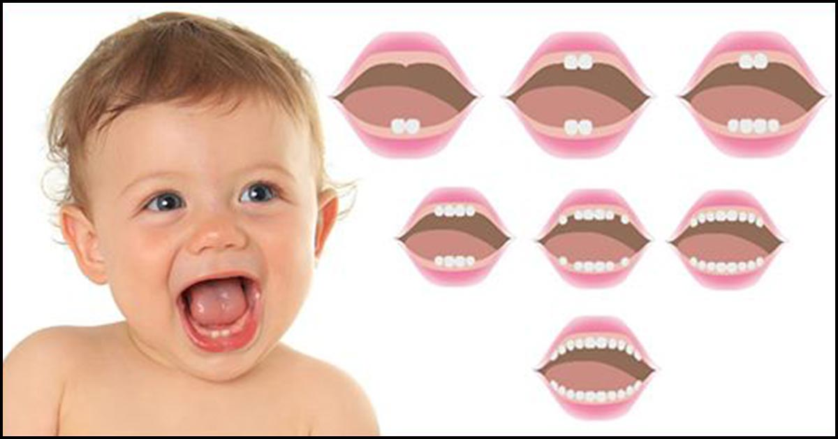 Teething In Toddlers What Are Its Symptoms And How To