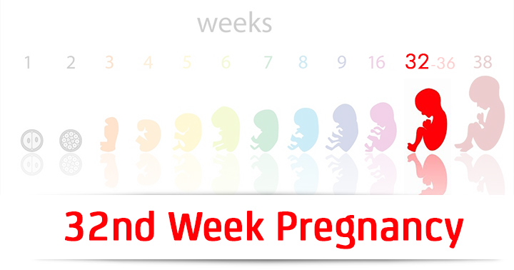 32nd Week Pregnancy