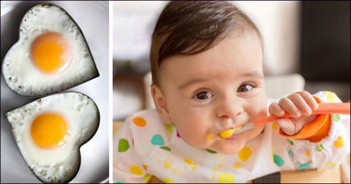 11 quick and delicious egg recipes for babies forumfinder Gallery