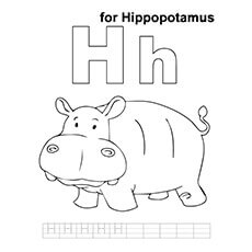 H For Hippo