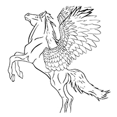 The Resplendent Pegasus