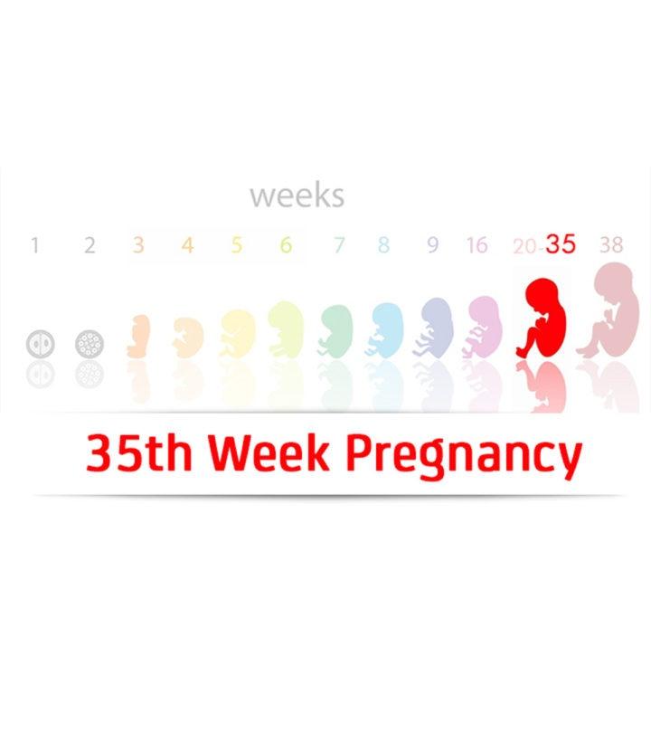 35th-Week-Pregnancy