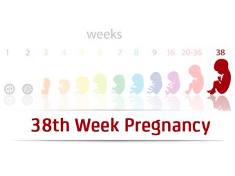 38th Week Pregnancy: Symptoms, Baby Development And Body Changes