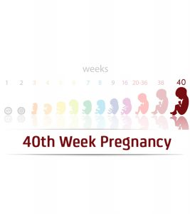 40th Week Pregnancy Symptoms, Baby Development, Tips And Body Changes