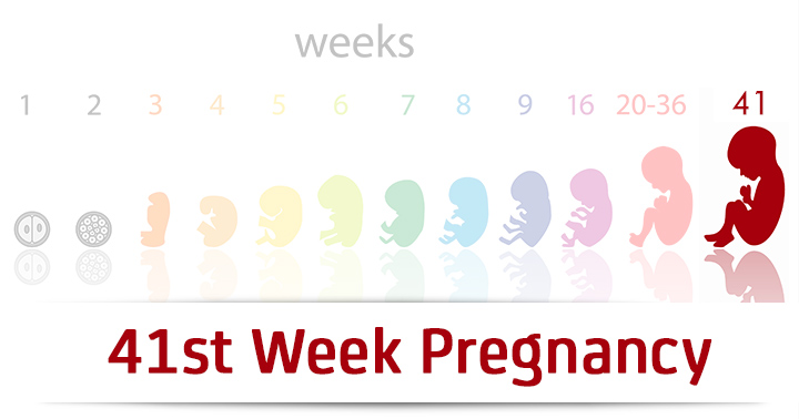 41st Week Pregnancy