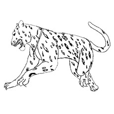 10 Best Free Printable Jaguar Coloring Pages Online