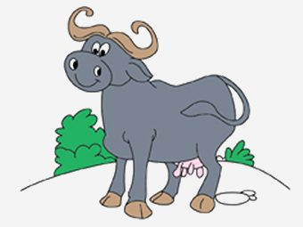 Top 10 Buffalo Coloring Pages For Your Little Ones