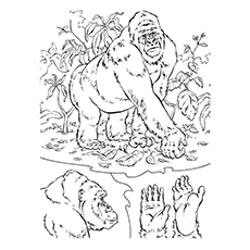 Cross River Gorilla Coloring Page Free Printable