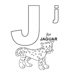 J For Jaguar
