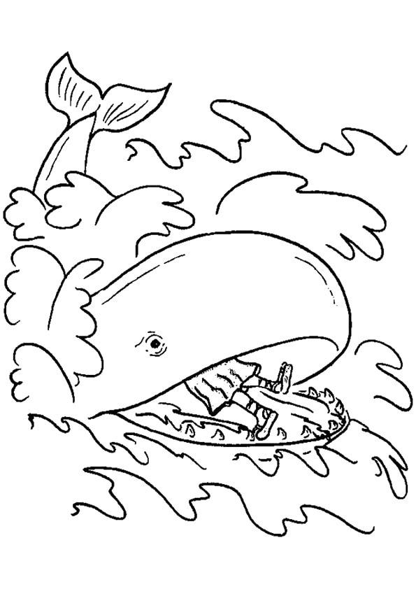 Jonah-In-Whale's-Tummy