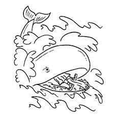 Jonah In Whale's Tummy