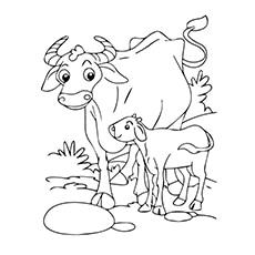 Mama Buffalo And Cal