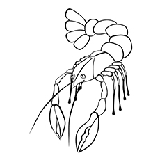 lobster coloring pages lobster scampi - Lobster Coloring Page