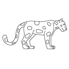 The Simple Jaguar