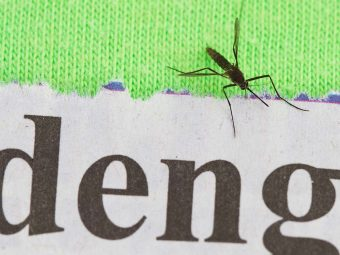 9 Serious Symptoms Of Dengue In Toddlers