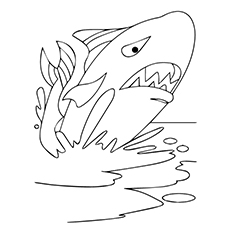 Coloring Pages of Angry Whale