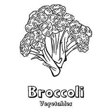 Broccoli Coloring Page - Broccoli Raab