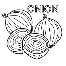 onion coloring pages 00364937