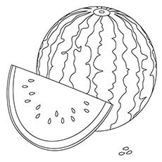 watermelon coloring page crimson sweet watermelon