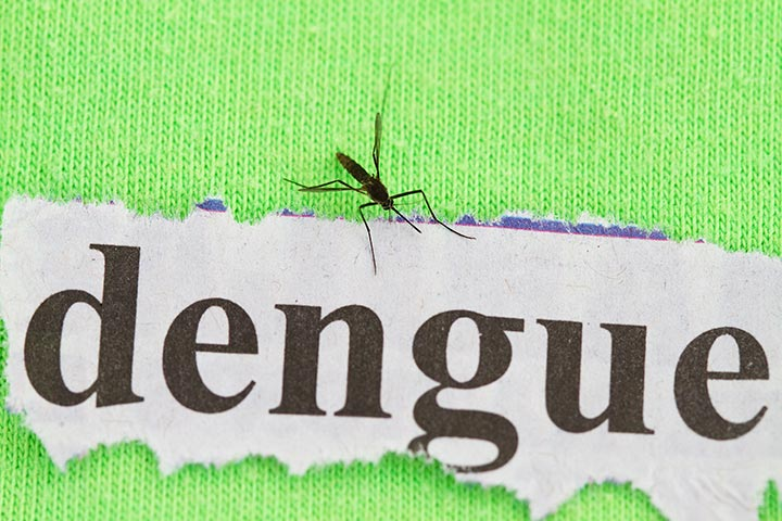 Superb 9 Serious Symptoms Of Dengue In Toddlers Ibusinesslaw Wood Chair Design Ideas Ibusinesslaworg