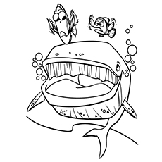 whale coloring pages finding nemo wha - Coloring Picture Of A Whale