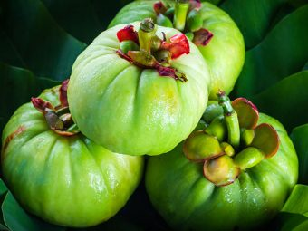 6 Incredible Health Benefits Of Garcinia Cambogia For Kids