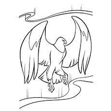 Marahute Eagle with Big wings Coloring Pages to Print