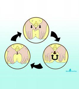 Perineal-Massage1