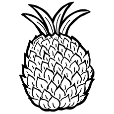 10 Best Pineapple Coloring Pages For Toddlers additionally Steering Rack Replacement Cost in addition 1956 Mercury Fuse Box Diagram in addition 1998 F150 Egr Valve YroRw 7CkYhxO3DQa9giZxaM PjlnYTsKuNfBp46Dmovo in addition F2dz3e723a. on 96 crown victoria
