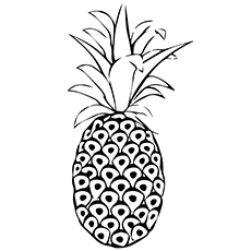 Pineapple Coloring Page - Red Spanish Pineapple