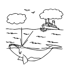 Whale Coloring Pages - Right Whale