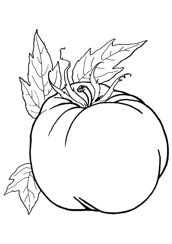 Ripened-Tomato