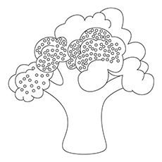 Broccoli Coloring Page - Sprouting Broccoli