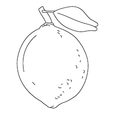 Lemon Coloring Page - Sweet Lemon