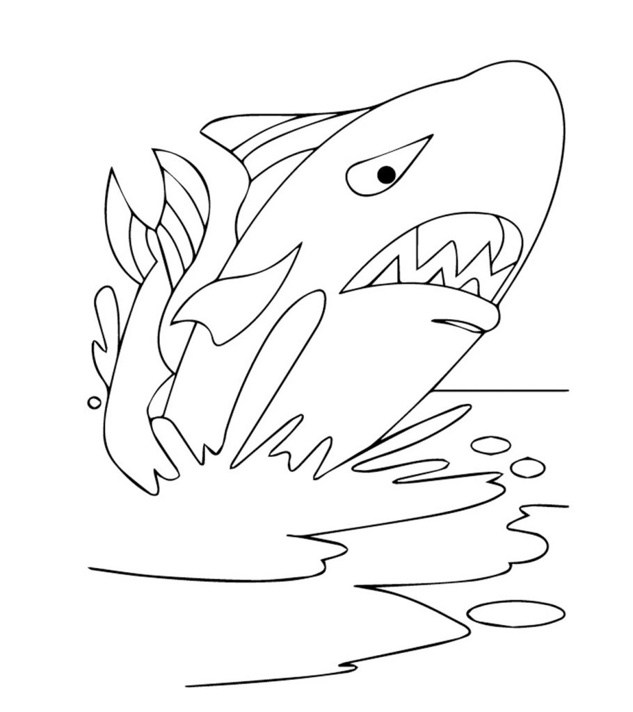 - 20 Printable Whale Coloring Pages Your Toddler Will Love