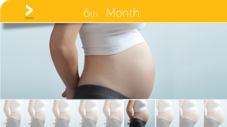 Pictures of six month pregnancy