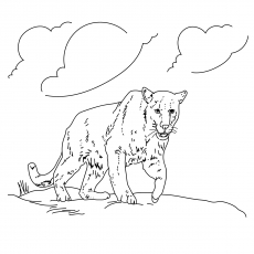 a panther taking a stroll - Panther Coloring Pages
