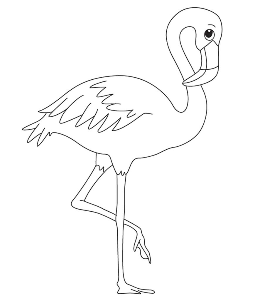 Top 10 Flamingo Coloring Pages For Toddlers