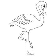 100 Animal Coloring Pages  Animal Jr