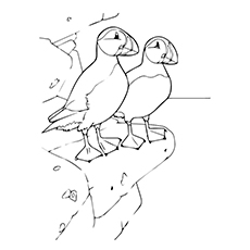 Atlantic Puffins Standing On A Rocky Cliff Coloring Sheet