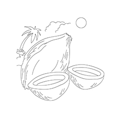Coconut Coloring Images