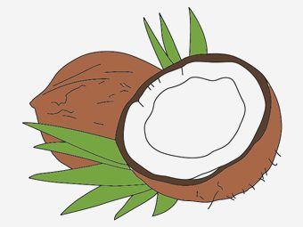 Top 10 Coconut Coloring Pages For Your Toddler
