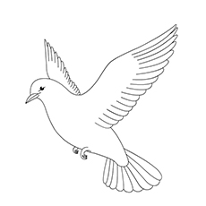 Collared Dove Coloring Page
